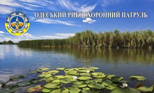 Протягом 2018 року Одеським рибоохоронним патрулем виявлено понад дві тисячі порушень зі збитками на 1,8 млн грн