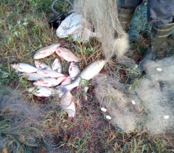Порушники завдали майже 5 тис. грн збитків, – Одеський рибоохоронний патруль