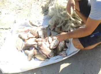 Одеський рибоохоронний патруль викрив порушень на майже 10 тис. грн збитків протягом одного дня роботи