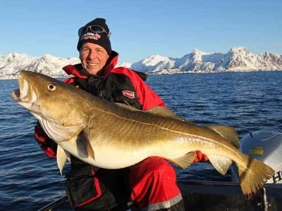 Чому риболовля у Норвегії вважається «елітною»?