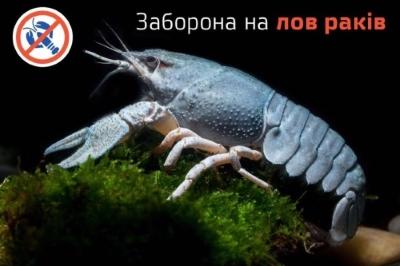 З 11 вересня стартує заборона на промисловий та любительський вилов раків у річці Дунай та Придунайських озерах, – Одеський рибоохоронний патруль