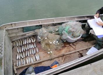 Протягом місяця на Одещині викрито більше 200 порушень правил рибальства