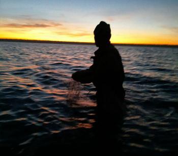 Рибпатрульні Одещини протягом дня вилучили 12 кг незаконно добутої риби